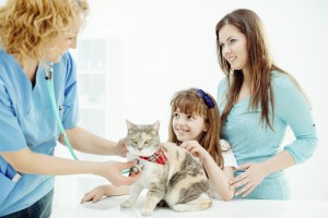 Vet examining little girls cat.