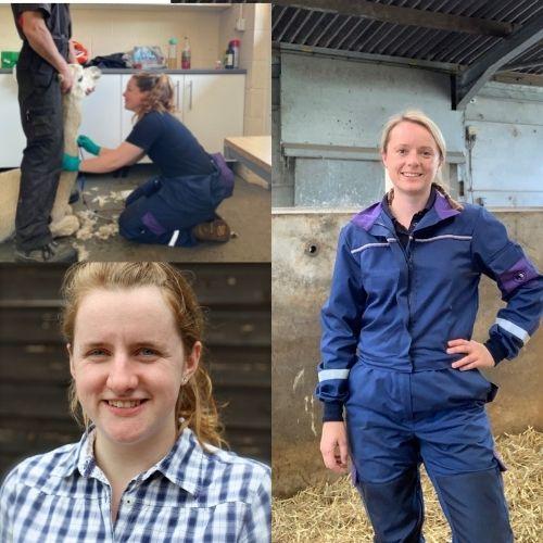 3 farm vets & 3 Donkeys: an insight into life of 3 female farm vets